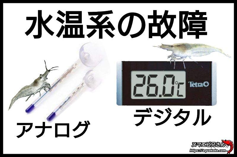 ミナミヌマエビ 水温計