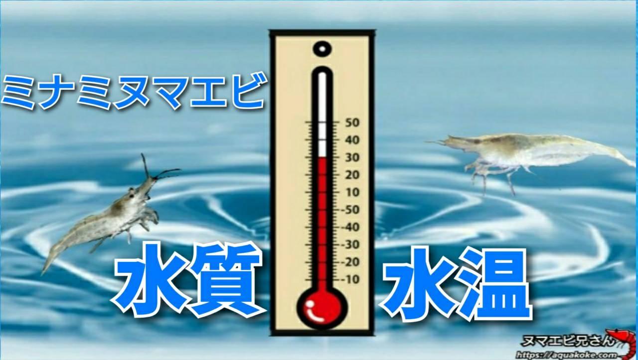 ミナミヌマエビ 水質 水温