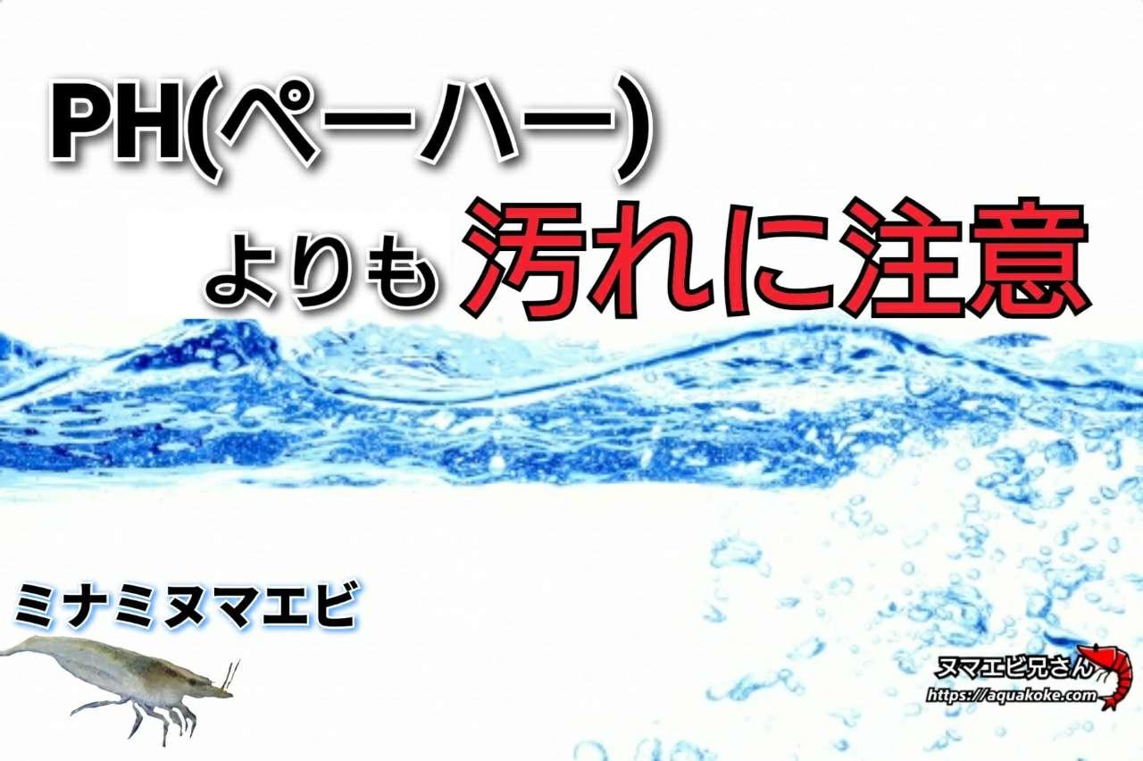 ミナミヌマエビ 水質 汚れ